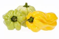 Grönsaker av den lilla habaneroen för guling- och gräsplanchilipeppar på vit bakgrund Royaltyfria Foton