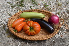 Grönsaker i korg Royaltyfri Fotografi