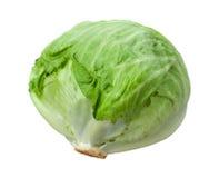 Grönsallathuvud som isoleras på White Arkivbild