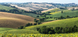 Gränser (Italien): sommarlandskap Arkivfoto