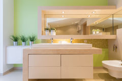 Grönt badrum i lyxig herrgård Royaltyfria Foton