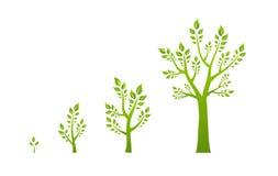 Grönt begrepp för trädtillväxteco Arkivfoto