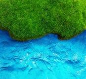 Grönt gräs och havsbakgrund. Arkivfoton