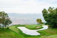 Grönt gräs på golffält Arkivfoton