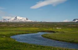 Grönt icelandic landskap med lantgårdhuset Arkivfoton