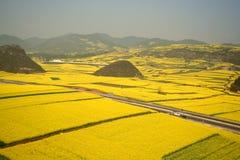 Großartige Ansicht der Rapsfelder mit Hügeln Lizenzfreie Stockfotografie