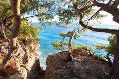 Großartige Ansicht von adriatischem Meer von der Steinklippe in Dalmatien Stockbilder
