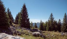 Großartige Ansichten von den Schweizer Jura-Bergen herüber zu den Schweizer/französischen Alpen und zu Mont Blanc im weiten Absta Lizenzfreie Stockfotos