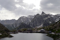 Großartige Bernhardiner Alpen Col. DU Schweizer Stockbilder