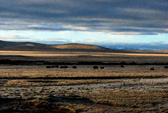 Großartige Landschaft Lizenzfreie Stockfotografie