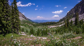 Großartige Nationalpark-Malerpinsel-Schlucht Teton Lizenzfreie Stockfotografie