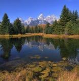 Großartige Teton Reflexionen Stockbild