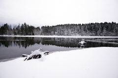 Großartige Winterlandschaft vom See und von Wald bedeckt mit whi Stockfotografie