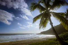 Großartiger anse Strand stockfoto