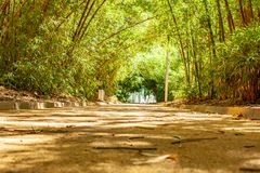 Großartiger entspannender Park weg zum Brunnen lizenzfreie stockfotos