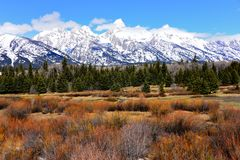 Großartiger Nationalpark Teton im Frühjahr mit dem Schnee umfasste teton Gebirgszug Lizenzfreie Stockfotos