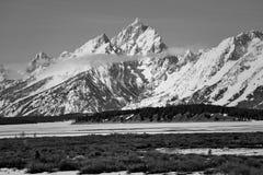 Großartiger Nationalpark Teton im Frühjahr mit dem Schnee umfasste teton Gebirgszug Stockbilder