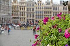 Großartiger Platz in Brüssel Lizenzfreies Stockfoto