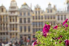 Großartiger Platz in Brüssel Stockbilder