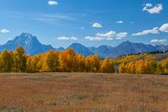 Großartiger Teton Nationalpark Stockfotografie