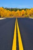Großartiger Teton Nationalpark im Herbst Stockfotografie