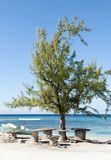 Großartiger Turk Island Picnic Place Lizenzfreies Stockfoto