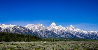 Großartiges Teton - Berg Teton Stockbild