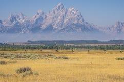 Großartiges Teton, das über einen Zaun und ein Feld steigt Lizenzfreies Stockfoto