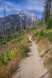 Großartiges Teton und Berg Owen steigen über einen Wanderweg Stockbild