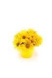 Großaufnahme der schönen gelben Chrysantheme blüht im Vase Lizenzfreies Stockbild