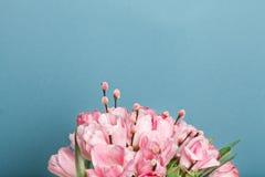 Großaufnahme des Blumenstraußes der rosa frischen Tulpen mit Pussyweide Lizenzfreie Stockbilder