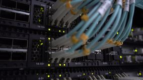 Großaufnahme des modernen Internet-Schalters mit verstopften Ethernet-Kabeln stock footage