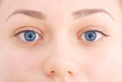 Großaufnahme des weiblichen blauen Auges Stockfoto