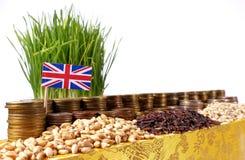Großbritannien fahnenschwenkend mit Stapel Geldmünzen und Stapel des Weizens Stockbilder