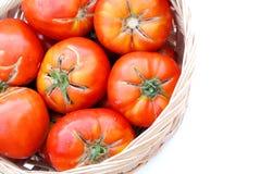 Große ökologische Tomaten in einem Korb Lizenzfreie Stockfotos