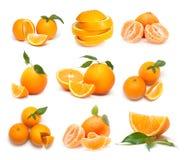 Große Ansammlung reife Orangen Stockbilder