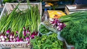 Große Auswahl des Gemüses auf dem Markt, Zwiebeln, Kopfsalat, Dill Lizenzfreies Stockfoto