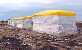 Große Baumwollballen auf einem Gebiet nach Ernte Lizenzfreie Stockbilder