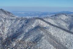 Große Berge Auf der Front und dem Kompromiss gibt es einen Wald, hinter den schneebedeckten Spitzen der Berge Schöne Querstation stockfotos
