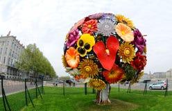 Große Blume in Lyon Lizenzfreie Stockfotos