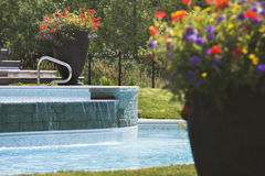 Große Blumenpotentiometer um einen Swimmingpool Stockfotos