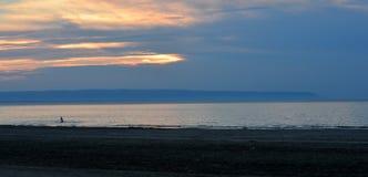 Große Bucht, kleiner Schwimmer Stockfotografie