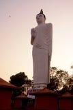 Große Buddha-Statue bei Sonnenuntergang nahe Sigiriya, Sri Lanka Lizenzfreies Stockfoto