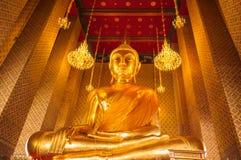 Große Buddha-Statue im Tempel Stockfotos
