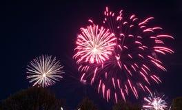 Große bunte Feuerwerke Lizenzfreie Stockfotografie