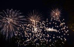 Große bunte Feuerwerke Stockbilder