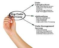 Große Daten-Dienstleistungen stockfotografie