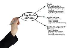 Große Daten-Dienstleistungen stockfoto