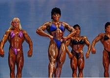 Große, definierte Frauen-Bodybuilder Lizenzfreie Stockfotografie