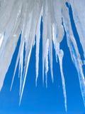 Große Eiszapfen auf Hintergrund des blauen Himmels Stockbild